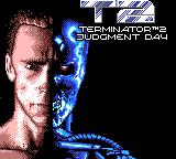 Terminator 2: Judgment Day Game Gear Title