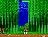 Kung Fu Kid SEGA Master System In the bamboo forest
