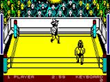 Bop'N Wrestle ZX Spectrum Lets fight