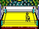 Bop'N Wrestle ZX Spectrum Head-lock