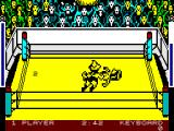 Bop'N Wrestle ZX Spectrum Pinned to the canvas