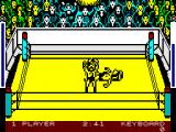 Bop'N Wrestle ZX Spectrum Fight is over