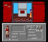 Dungeon Magic: Sword of the Elements NES Walking through a town