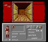 Dungeon Magic: Sword of the Elements NES First-person dungeon