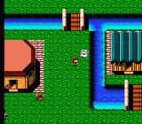 Faria: A World of Mystery & Danger! NES Visiting a town