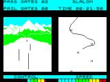 Winter Sports ZX Spectrum Slalom