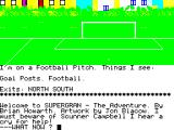 Super Gran: The Adventure ZX Spectrum On a football pitch