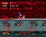 Sonic.EXE: The Game Windows I'm so tired!