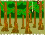 Safari Hunt SEGA Master System There's the spider