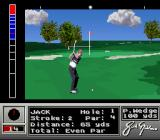 Jack Nicklaus' Unlimited Golf & Course Design SNES Approaching the green