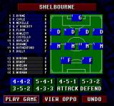 Championship Soccer '94 SNES Your squad