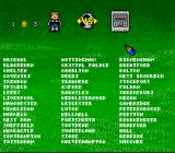 Kevin Keegan's Player Manager SNES Choose a team