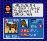 Winning Post SNES Selection of horses