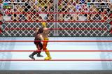 WWE Road to Wrestlemania X8 Game Boy Advance Grappling