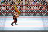 WWE Road to Wrestlemania X8 Game Boy Advance You have your opponent in the air