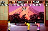 International Karate Advanced Game Boy Advance Practice Dojo. Black belt. You can select the level/belt.