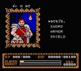 Ys II: Ancient Ys Vanished - The Final Chapter NES Choose yar poison!..