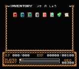 Ys II: Ancient Ys Vanished - The Final Chapter NES Inventory