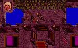 "Ultima VII: The Black Gate DOS ...which is an unlikely case if you have visited those Baths and engaged the ""services"" (wink, wink) of one of those ladies!.."
