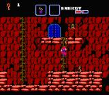 The Goonies II NES Climbing on vines to reach a door