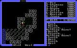 Ultima IV: Quest of the Avatar DOS You wandered this far to discover... a dungeon entrance!