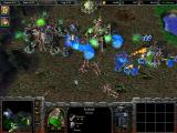 Warcraft III: Reign of Chaos Windows Battling the undead minions with two human heroes.