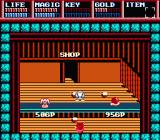 Legacy of the Wizard NES Shopping