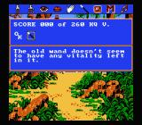 King's Quest V: Absence Makes the Heart Go Yonder NES Inventory