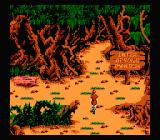 King's Quest V: Absence Makes the Heart Go Yonder NES Ooooh, dangerous...