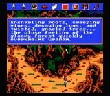 "King's Quest V: Absence Makes the Heart Go Yonder NES Typical ""sierraish"" colorful description"