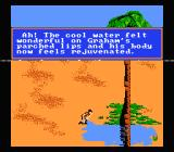 King's Quest V NES Sir Graham drinks