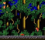 Stanley: The Search for Dr. Livingston NES Jumping in the forest