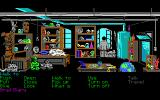 Indiana Jones and The Last Crusade: The Graphic Adventure DOS Indy's office (EGA version)