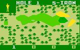 PGA Golf Intellivision In the fairway on hole one