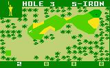 PGA Golf Intellivision Hole three on this nine hole course