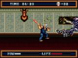 Splatterhouse 3 Genesis Use the bat to splice heads