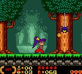 Shantae Game Boy Color Spider in forest