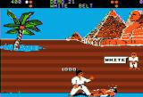 World Karate Championship Apple II Egypt stage. Red player lying on the ground after receiving a hit.