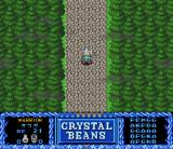 Crystal Beans From Dungeon Explorer SNES Town road