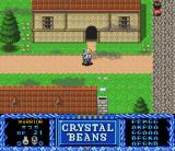 Crystal Beans From Dungeon Explorer SNES In a town