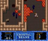 Crystal Beans From Dungeon Explorer SNES Fighting some black guys near lava