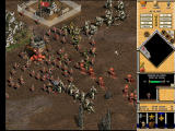Seven Kingdoms II: The Fryhtan Wars Windows With a higher resolution, the graphic interface is only on the right side of the screen and you have a better view of the battlefield.