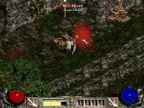 Diablo II Windows It's a miracle how you can cut down any kind of swarm with an exe