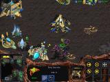 StarCraft Windows Zerg guardians are deadly against ground units and structures