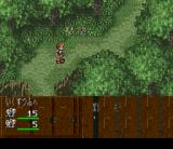 Dark Law: The Meaning of Death SNES Forest path