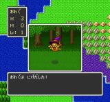 Dragon Quest I & II SNES Fighting a mean sly guy (DQ)