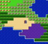 Dragon Quest I & II SNES The violet squares are posion fileds (DQ)
