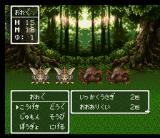 Dragon Warrior III SNES Another beautiful scenery - forest