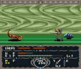 Dragon View SNES Random battle on the world map