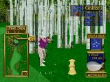 Peter Jacobsen's Golden Tee Golf PlayStation This will be tough.